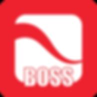 BOSS srl Go web software parrucchieri estetiste