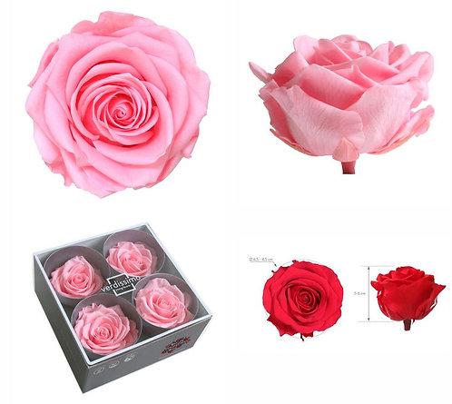4 ROSES ROSE PASTEL PREMIUM
