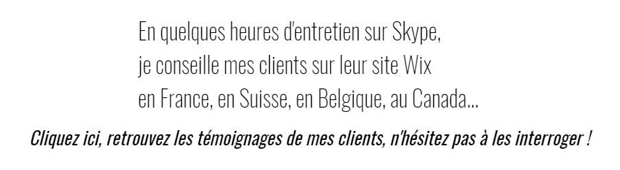 Enanti.fr, Assistance Wix