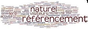 référencement naturel, agence web tpe saint raphael, fréjus, cannes, nice, var, alpes maritimes