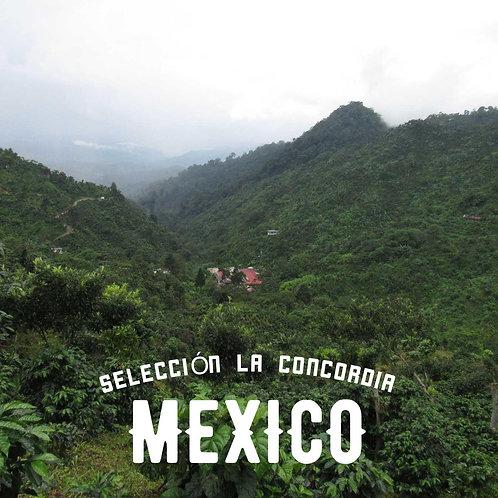 SELECCIÓN LA CONCORDIA -MEXICO