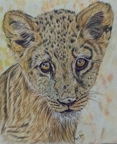 indigo mari ann leopard.jpg