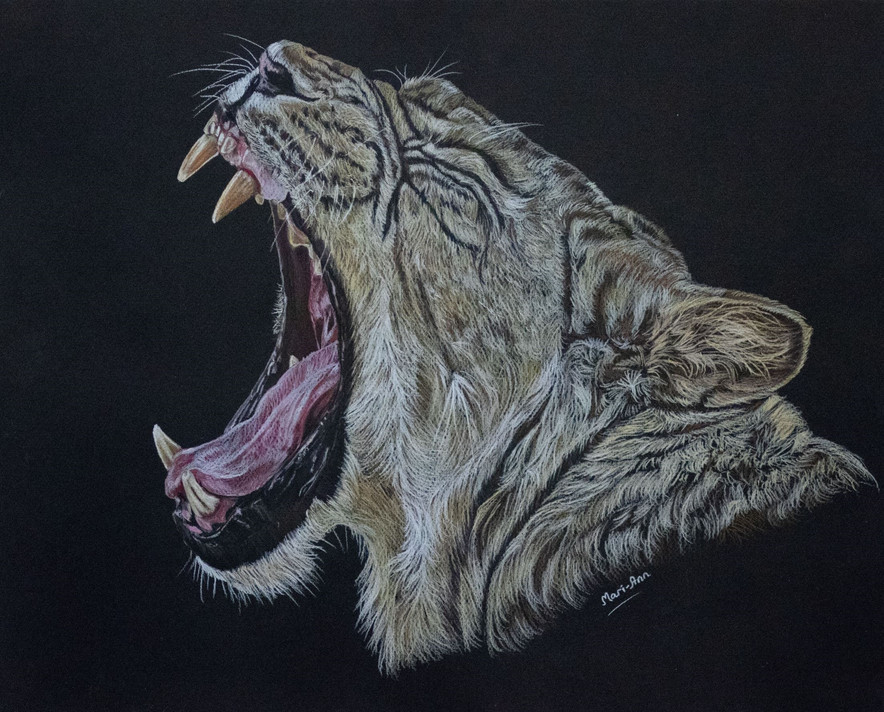 indigo mari ann tiger.jpg