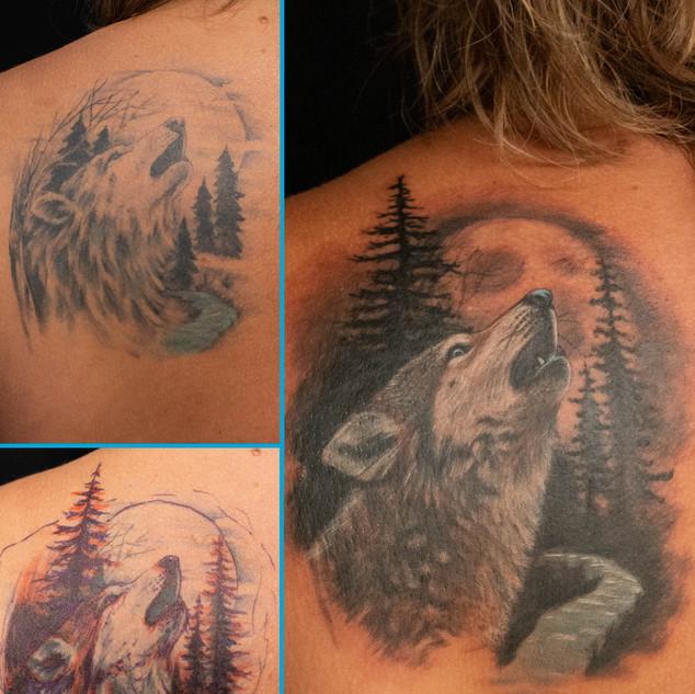Wolf Rework