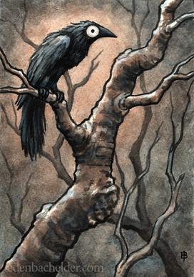 Black Bird Watercolour IX
