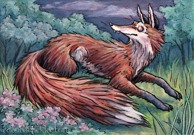 Fox in Phlox