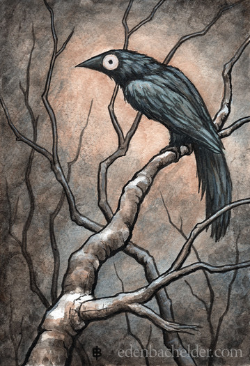 Black Bird Watercolour IV