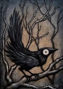 Black Bird XVI