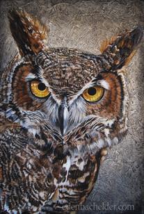 Cindy's Owl
