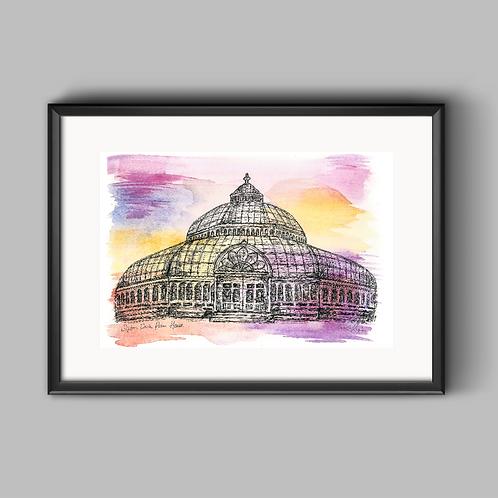 Palmhouse Dusk Print