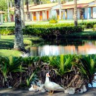 Vista da lagoa e chalés