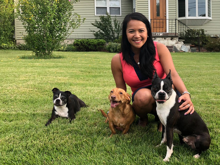 Rep. Nguyen Announces Sponsored Bills Filed – Seeks Protection for Foster Animals