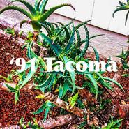 '91 Tacoma