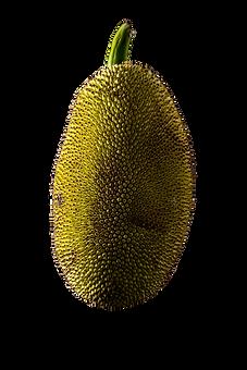 Jackfruit_edited.png