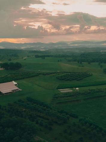 Chattooga Belle Farms