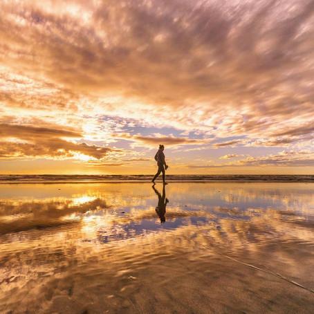[여행지/캘리포니아 San Diego/해변] Coronado Beach