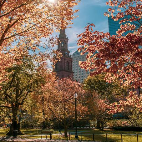 [여행지/매사추세츠 Boston/공원] Boston Common