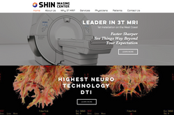 Shin Imaging Center, California, Website Development