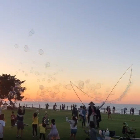[여행지/캘리포니아 San Diego/해변] La Jolla Cove
