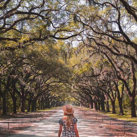 [여행지/조지아 Savannah/공원] Forsyth Park