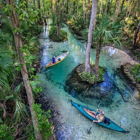 [여행지/플로리다 Orlando/공원] Kelly Park Rock Springs
