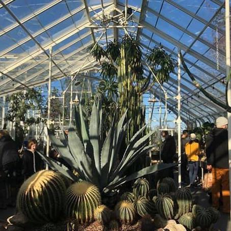 [여행지/워싱턴 Seattle/정원] Volunteer Park Conservatory