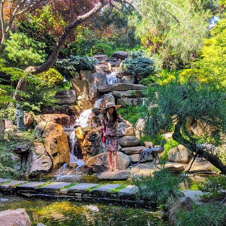 [여행지/워싱턴 D.C. Forrest Hills/정원] Hillwood Estate, Museum & Gardens