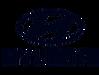 Hyundai-symbol-blue-2560x1440_edited.png