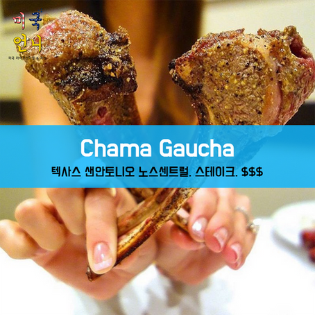[여행지/텍사스 San Antonio/스테이크/$$$] Chama Gaucha Brazilian Steakhouse