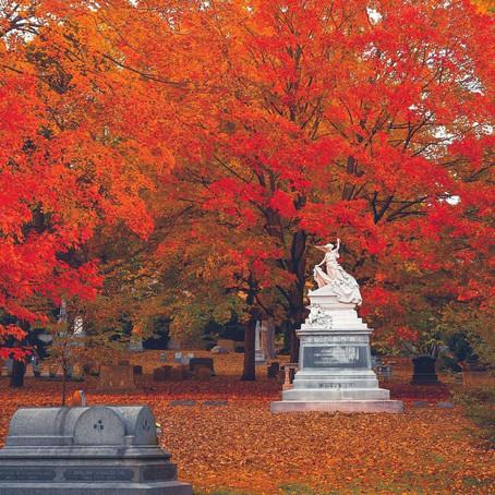 [여행지/매사추세츠 Cambridge/묘지] Mount Auburn Cemetery