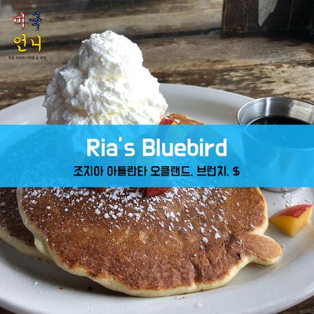 [맛집/조지아 Atlanta/브런치/$] Ria's Bluebird