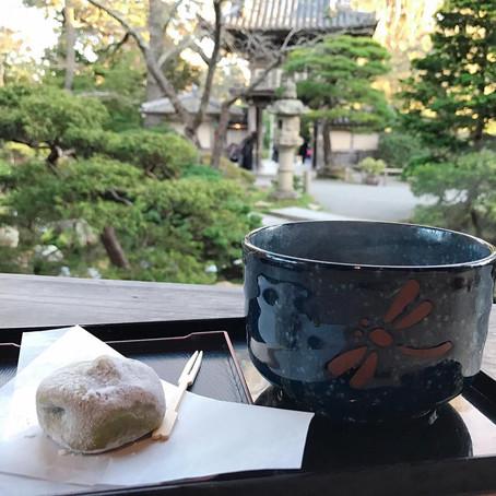 [여행지/캘리포니아 San Francisco/정원] Japanese Tea Garden