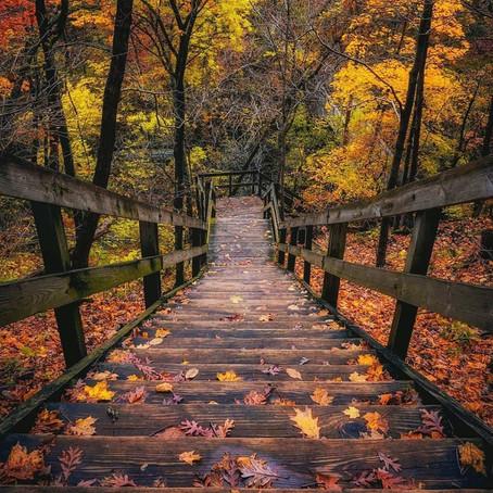 [여행지/일리노이 Oglesby/주립공원] Matthiessen State Park