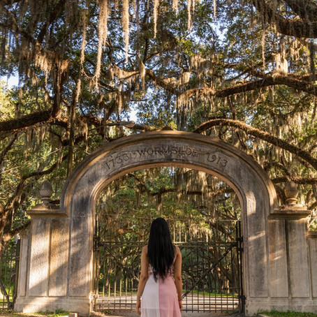 [여행지/조지아 Savannah] Wormsloe Historic Site