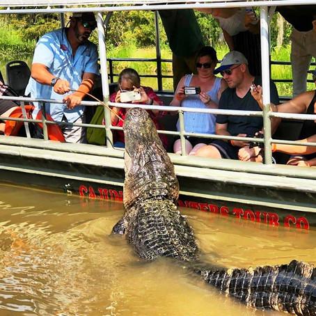[여행지/루이지애나 Slidell/관광] Swamp Boat Tour