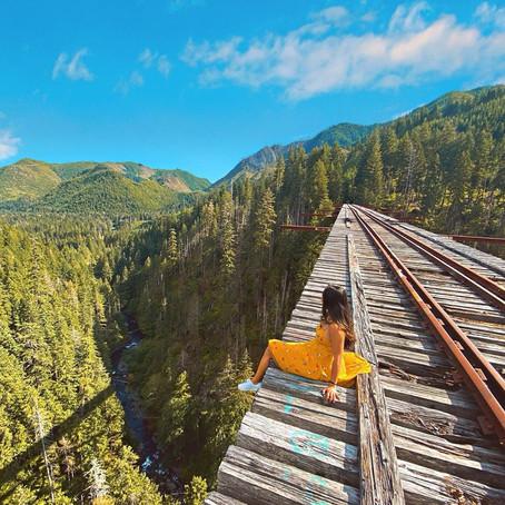 [여행지/워싱턴 Shelton/다리] Vance Creek Bridge