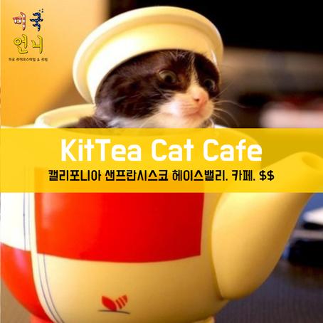 [맛집/캘리포니아 San Francisco/카페/$$] KitTea Cat Cafe