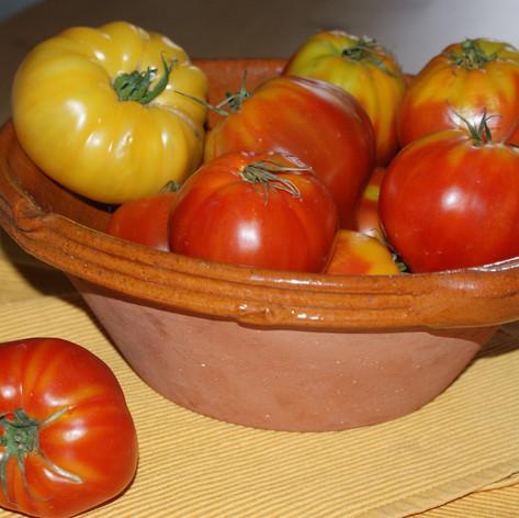 Tomate Cornue Ancienne