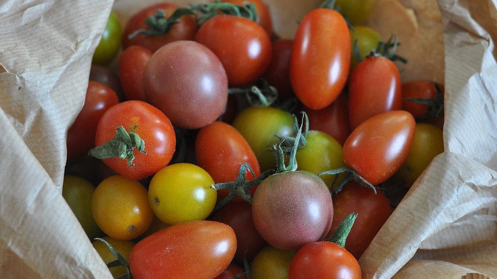 Mix colorés de Tomates cerises