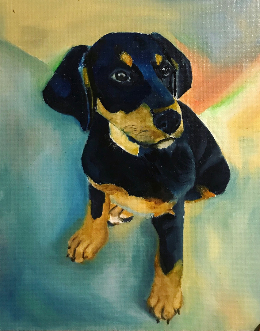 8x10 dog portrait