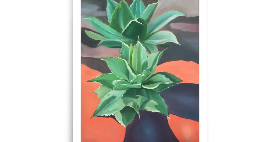 Agave Poster Print
