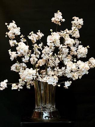 Blossom your dream
