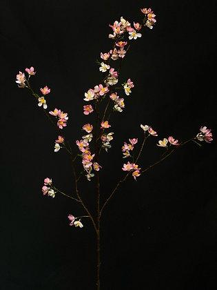 Bloesem tak licht roze