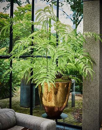 Planttastic