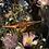 Thumbnail: If you're a bird, I'm a bird