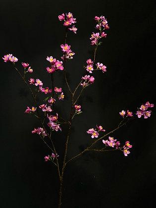 Bloesem tak lavendel roze