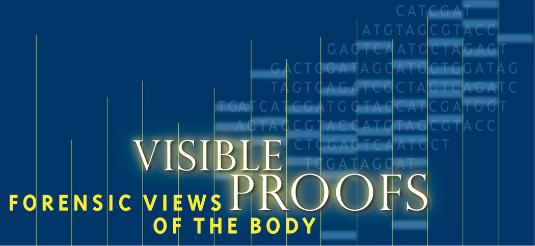 Visible Proofs: Forensic Views of the Body