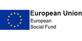 European Social Fund.png