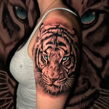 Blue Eyes Tiger
