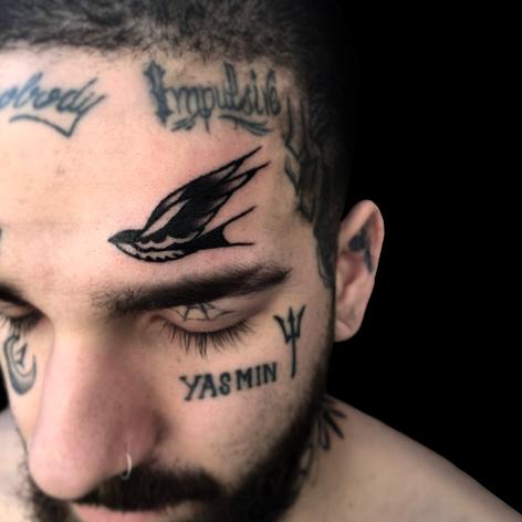 Face Swallow